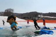 痰玫瑰花滑雪公园
