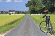 เช่าจักรยาน